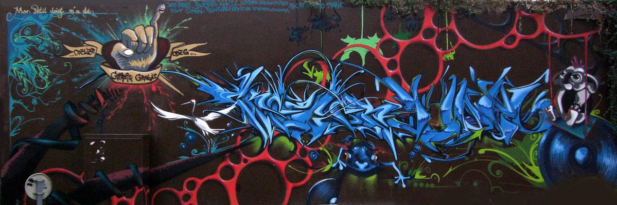 Free graffiti - CREWER et ODEG - Talence 2008