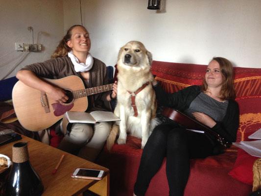 Unser Proben-Hund Lotte