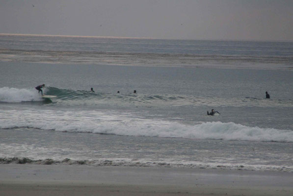 ... great surf spots from LA to San Diego