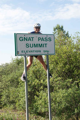 Gnatt Pass Summit