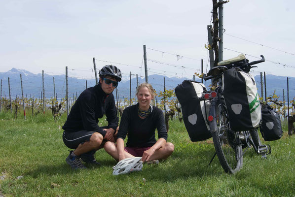 In the vineyards above Lake Geneva.