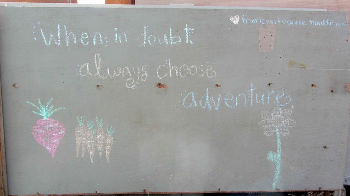 Choose adventure!