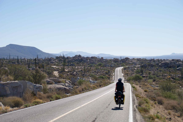 Going down to Cataviña