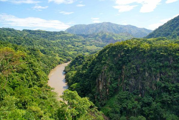 Rio Cauca.