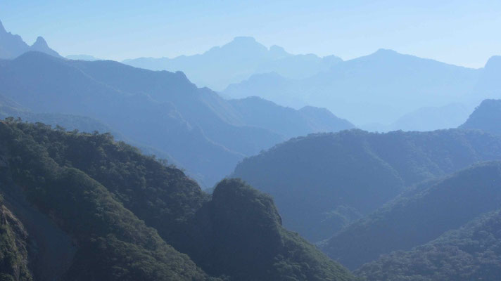 We had to climb over an altitude of 2700 m trough the Sierra Madre Occidental