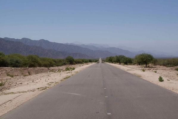 "Viel Pampa entlang der Ruta 40. // Along the Ruta 40, we rode through large bits of ""pampa""."
