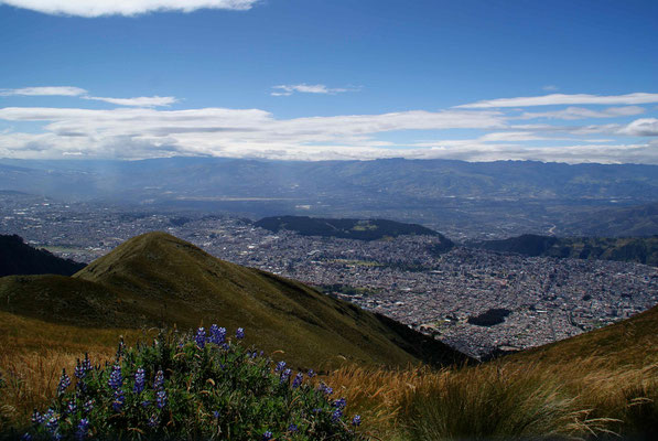 View over Quito from Pinchicha