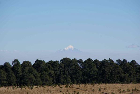 The highest vulcan Mexicos Citlaltépetl.
