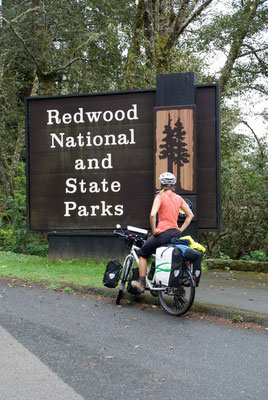 Redwoods we are coming.
