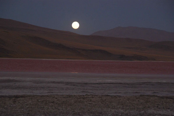 Full moon at Laguna Colorada