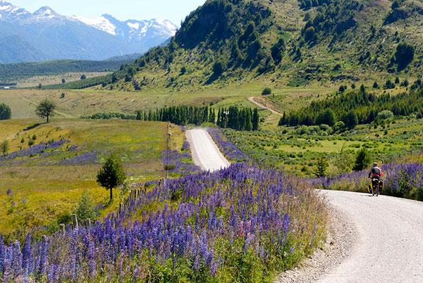 The old road (ruta 7) between Villa Maniguales and Coyhaique.