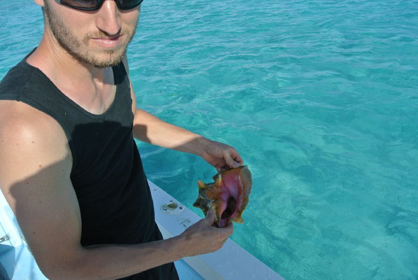Sam is holding a shell from the Belize Barrier Reef