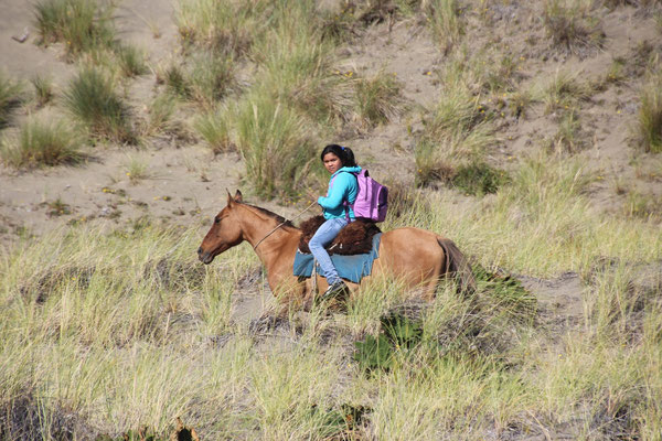 Wieso Schulbus wenn man mit dem Pferd zur Schule kann.