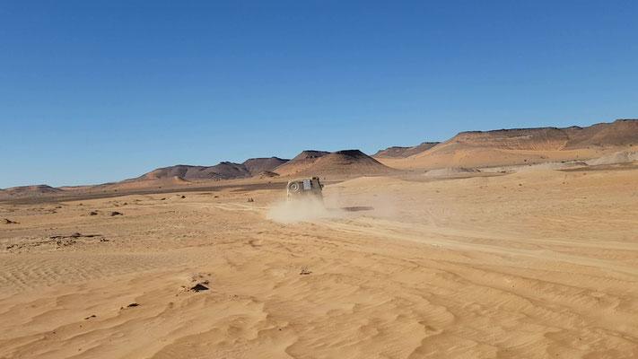Macht einfach Spass im Sand herum zu düsen