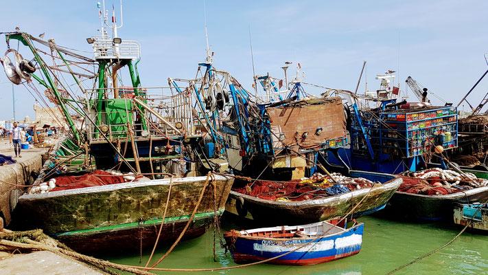 Am Hafen von Essaouira geht es bunt zu und her.