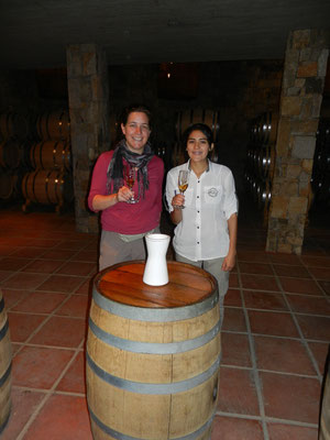 Private Pisco Tour in Pisco Elqui