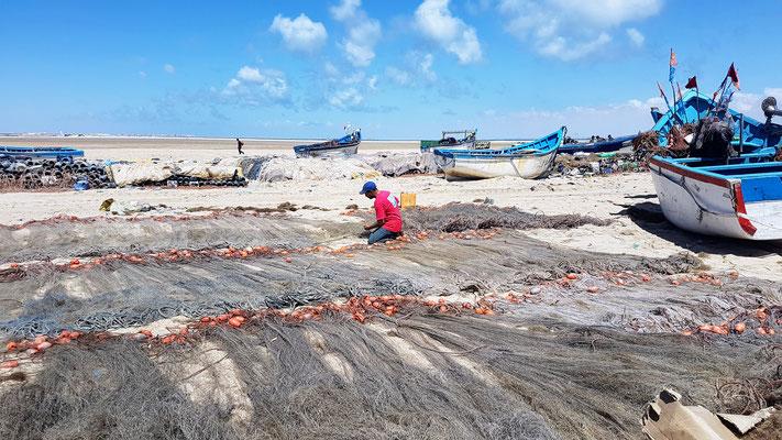 Die Fischer in Dakhla entflechten das Netz...