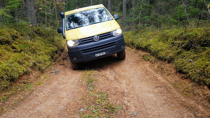 Offroaden 'light' im Gauja Nationalpark