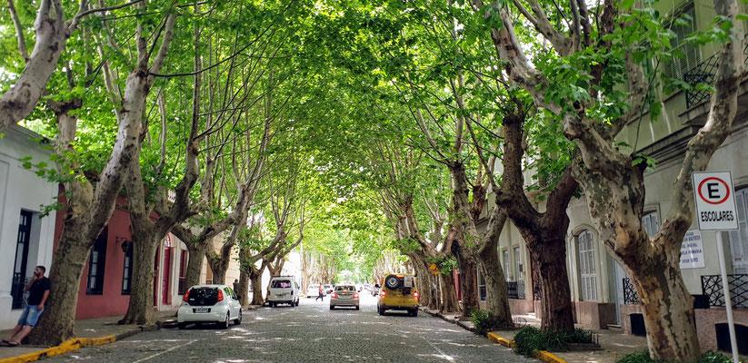 Die schönste und älteste Stadt Uruguays: Colonia del Sacramento