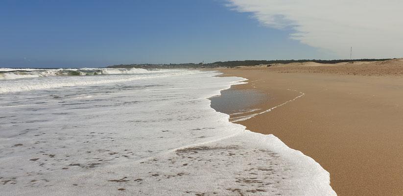 Zwischendurch den wunderschönen Strand von La Pedrera geniessen.