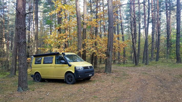 Übernachtungsplätzchen mitten im Wald von Lettland