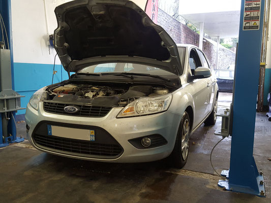Distribution - Ford Focus
