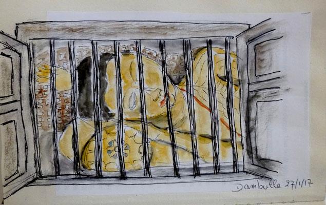 Bouddha en cage à Dambulla