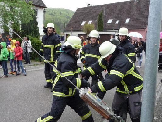 Die Freiwillige Feuerwehr Blaubeuren, Abteilung Weiler mit ihren jungen Feuerwehrmännern beim Bedienen der Winde. Maibaumstellen 2015 Foto: Martin Knaus
