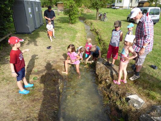 Spielende Kinder am Aischbach      Foto: Martin Knaus