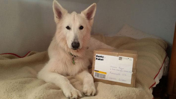 Oh, ein Paket