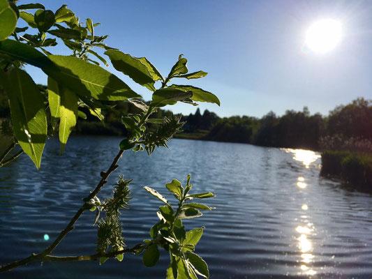 Du darfst auch im See schwimmen, nur pass auf die Hechte auf :-)