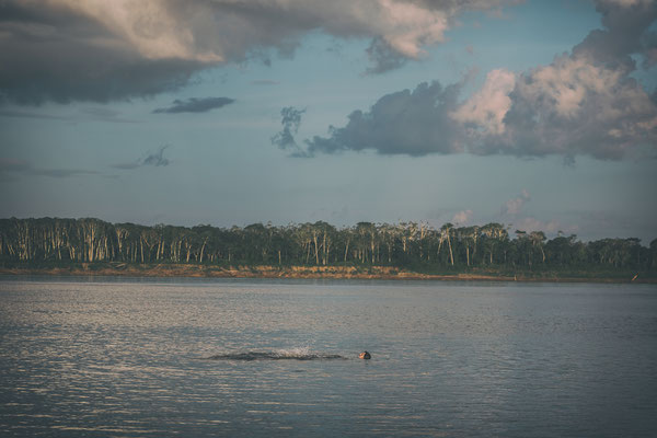 Roman schwimmt im Amazonas