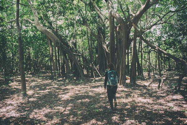 Theresa im Amazonas