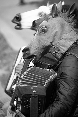 Spelend paard