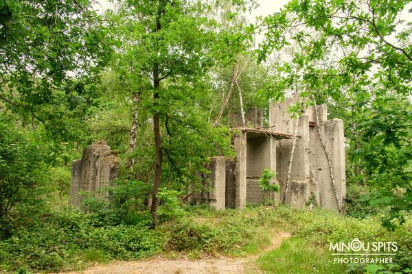 Oude grindwinning nu teruggegeven aan de natuur in Limburg
