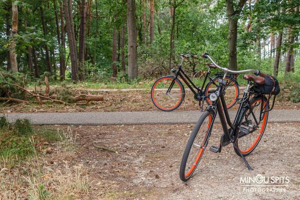 Limburg op de fiets