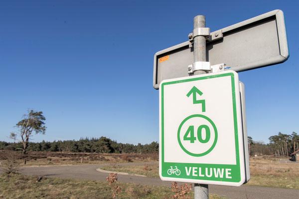 Veluwe © fotograafminou.nl
