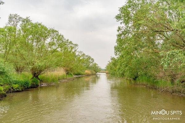 Een van de doorgangen in de Biesbosch