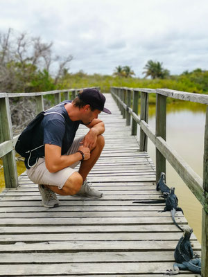 Follow Elli Reisebericht Weltreise Erfahrung Galapagos Inseln - Isla Isabela
