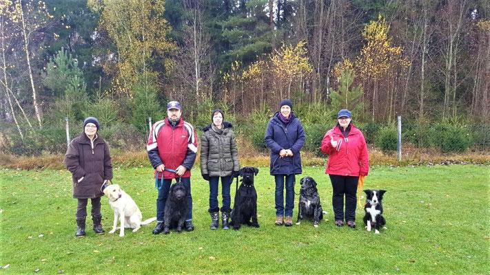 BH-Prüfung 2017 bei den raindogs Regen e.V.