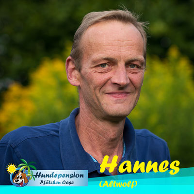 Hannes (Altwolf)