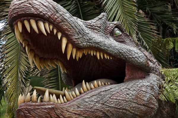 Universal Studios - Plasic Crocodile