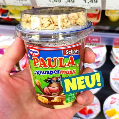 Dr.Oetker Paula Pudding mit Knuspermüsli