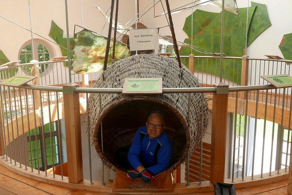 Interaktive Erlebnisausstellung im Park von Ivenack