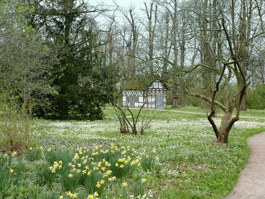 Im vorösterlichen Park  von Schloss Bothmer