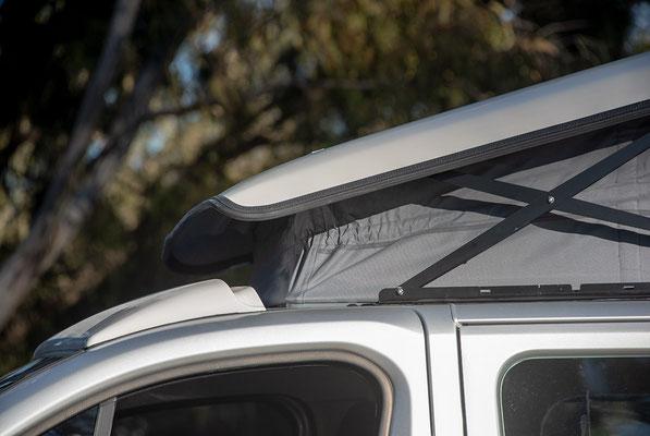 Details spoiler Reimo roof 280613