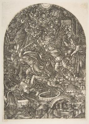 1555 DUVET