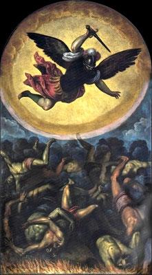 1580 PALMA IL GIOVANE
