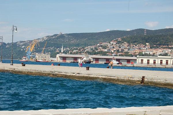 scorcio con Monte Grisa-porto vecchio
