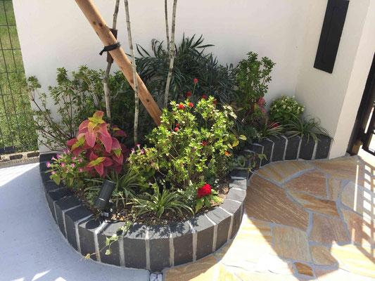 黒のピンコロ花壇と植栽(寄せ植え)